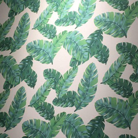 papel de parede com folhas de bananeiras verdes