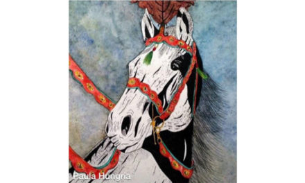 Os lindos trabalhos de Paula Hungria Machado
