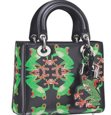 Lady Dior design de Chris Martin