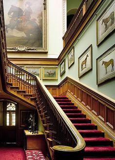 escada-inspiracao