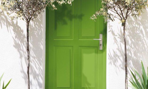 Celebração ao Verde e 12 curiosidades sobre a cor