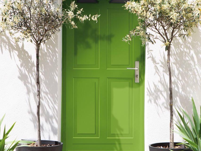 Vamos colorir o ano! Celebração ao verde e 12 curiosidades sobre ele