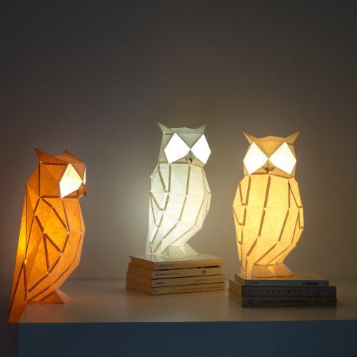 night_owl-09-dsc_0157_c