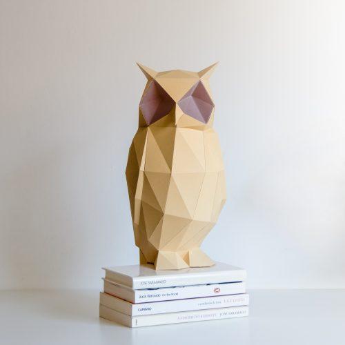 night_owl-11-dsc_0169_c
