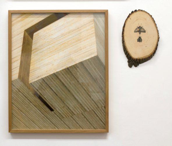 Maria Cherman, com fotografia de Luciano Bogado e Luana Fortes, com nanquim sobre madeira Quadra