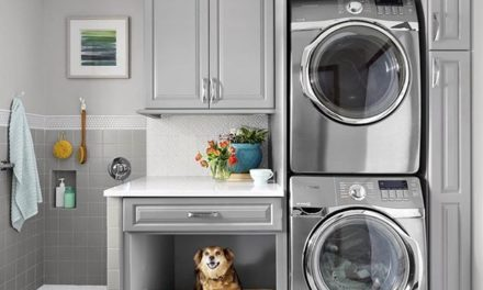 Dog Décor! Ideias de  espaço e decoração para os cachorros.