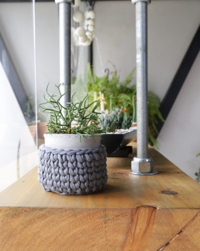 cesta cinza com planta tramaria conexao decor