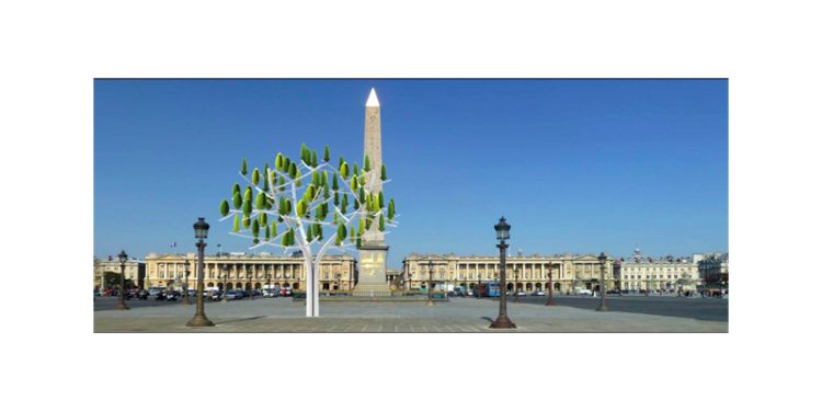 Essa árvore, além de linda, ainda produz energia.