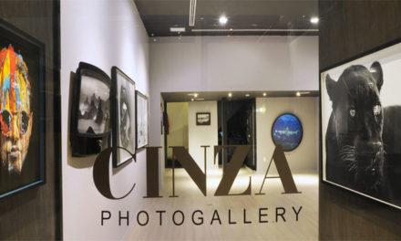 Cinza PhotoGallery, não deixe de conhecer!