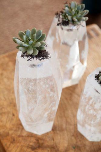 As fofas e queridas suculentas na decoração. Cristal com suculentas dentro.