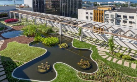 Visita guiada jardim da ArtRio