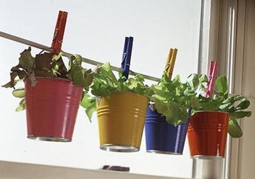 horta de baldinhos coloridos para ideias criativas e charmosas para a cozinha