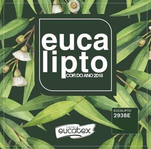 Foto da cor de 2018 eleita pelas tintas Eucatex, verde Eucalipto.