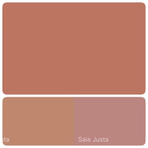 Combinação de cores com a cor de 2018 eleita pela Suvinil Tintas, Terra Roxa.