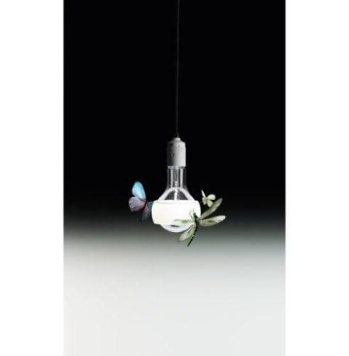 Pendente com borboletas , da FAS iluminação.
