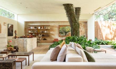 """Suite Arquitetos apresenta a """"Casa da Árvore"""" na mostra CASACOR SP 2018"""