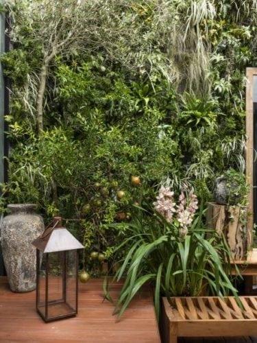 Jardim de Myrian Marques para casa cor sp com foto de renato navarro