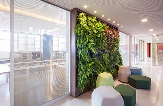 O hall de entrada do laboratório com assentos modulares coloridos Ovo e jardim vertical Vertigarden, Colégio Bandeirantes por Denise Barretto