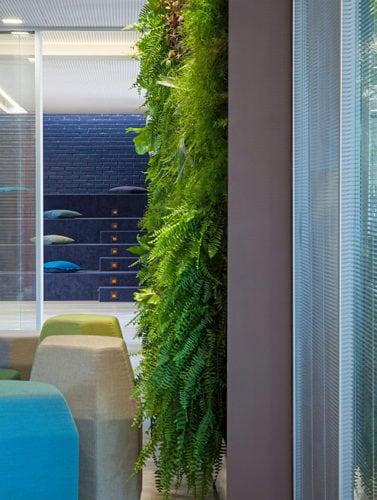 parede plantas vertical, assentos ovo e anfiteatro no Colegio Bandeirantes por Denise Barretto