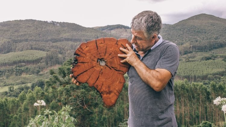 Luis Vieira com madeiras Cortes da Terra, obras do artesão Luiz Vieira
