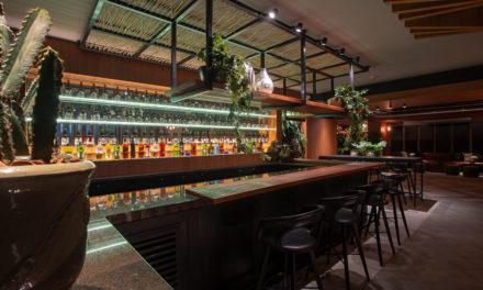 Aconchego e personalidade marcante definem o pub do hotel