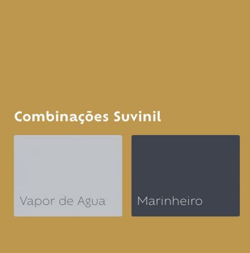 Combinação de cores da Tintas Suvinil, a cor do ano de 2019, Quentão, com um cinza e azul