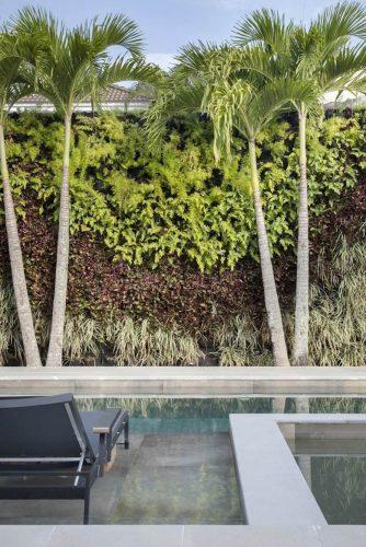 Muro com plantas no projeto de Carmen Mouro