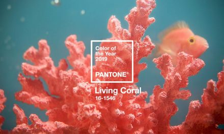 A cor de 2019 pela Pantone: Living Coral