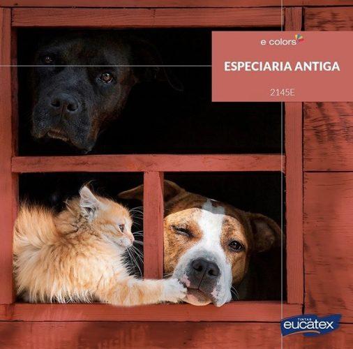 Casinha de cachorro pintado com a cor do ano de 2019 da Eucatex Tintas,Especiaria Antiga, uma cor rosácea.