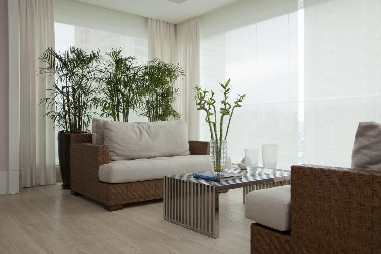 poltronas e plantas na sala de Leonardo Junqueira