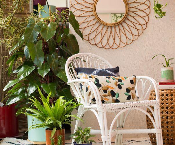 cadeira e espelho da coleção Jungle Botanic da Westwing