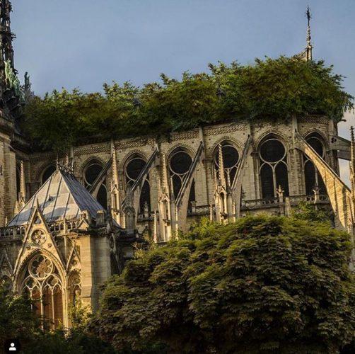 proposta de antoniel felainne para a reconstrução da Notre Dame