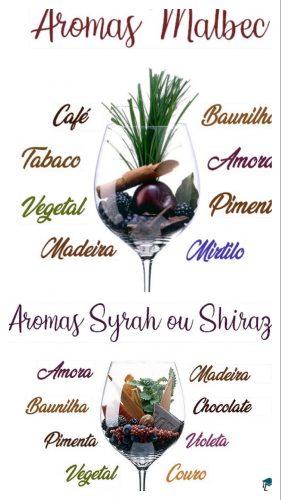 Recebendo com vinho. Aromas Malbec e Syrah
