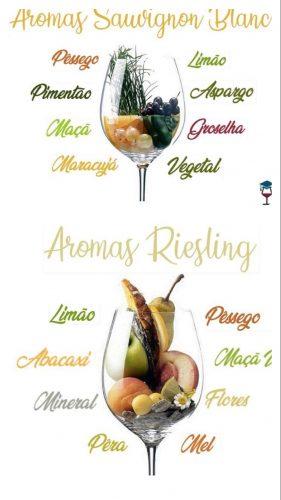 recebendo com vinho. Terroir do vinho sauvignon blanc e riesling