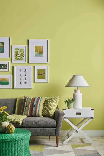 Verde cítrico é a cor do mês de agosto da Sherwin-Williams; parede de fundo do sofá cinza pintada com verde cítrico .