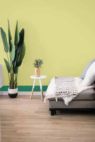 Verde cítrico é a cor do mês de agosto da Sherwin-Williams. Piso de madeira, vaso de planta, sofá cinza e a parede ao fundo pintada de verde cítrico com rodapé verde escuro.