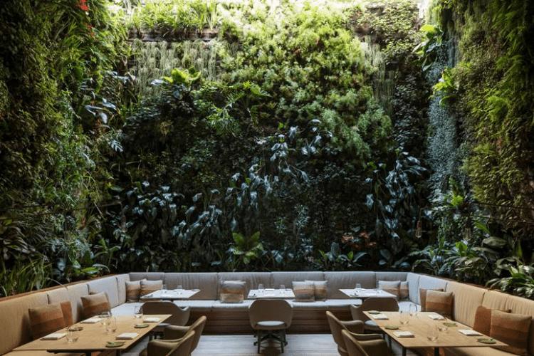 Design Biofílico: Arquitetura que transforma a sua vida. Restaurante com uma enorme parede verde em volta.