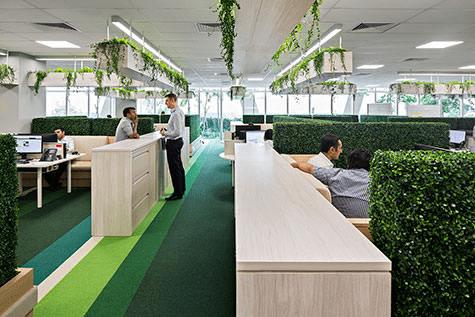 Design Biofílico: Arquitetura que transforma a sua vida. Ambiente corporativo com plantas e tapete verde.