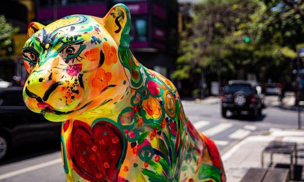 Esculturas de onças-pintadas que coloriram ruas e parques de São Paulo vão a leilão