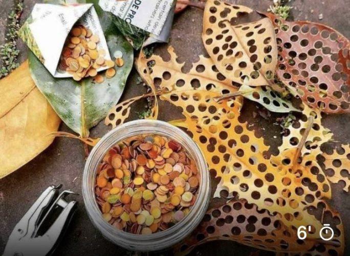 Confete ecológico e sustentável. Melhor maneira faça vc mesma, folhas caídas no chão usando um furador de papel viram confete