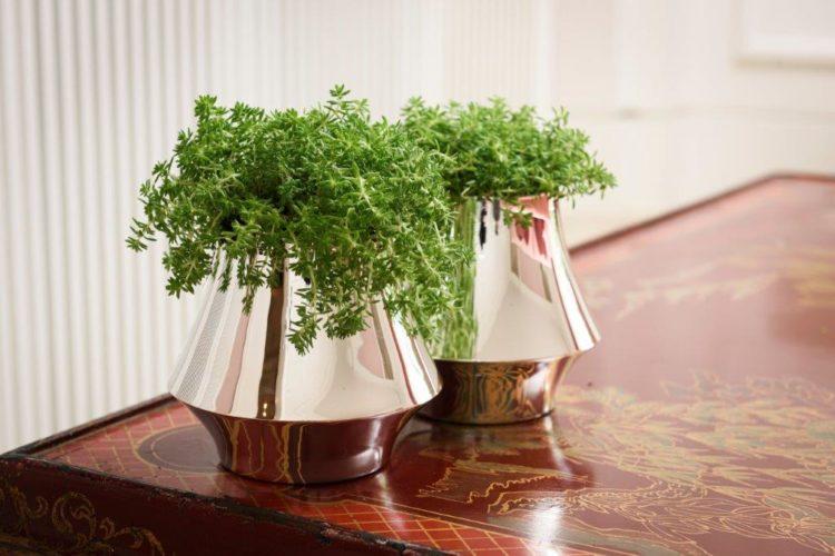 Em parceria com Anna Carolina Bassi-St. James lança coleção Femme. Dois vasos bojudos  em prata com arranjo de verde.