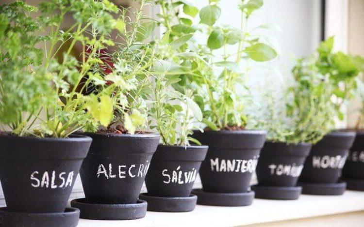 Transforme (parte da) sua sacada em uma horta. Vasos pretos , escrito em giz os nomes das ervas plantadas