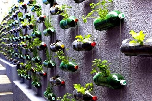Transforme (parte da) sua sacada em uma horta.Muro repleto de garrafas pets recotratas e penduradas com ervas plantadas