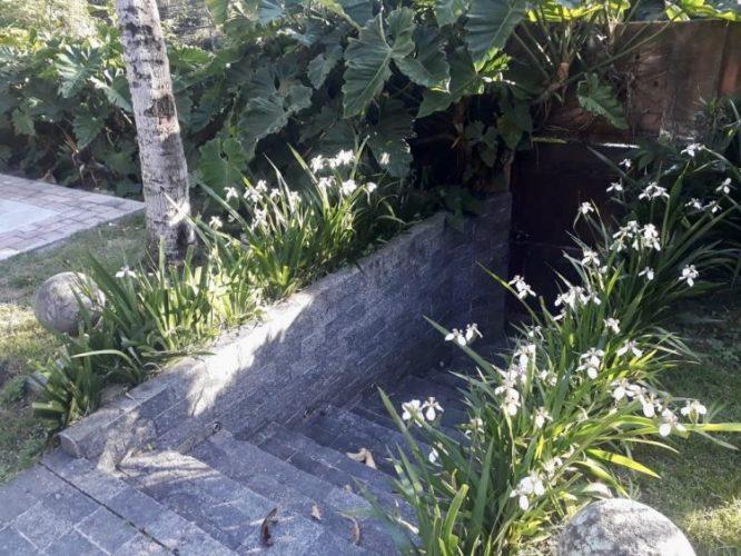Entarad de uma casa com degraus em pedra e na lateral flores