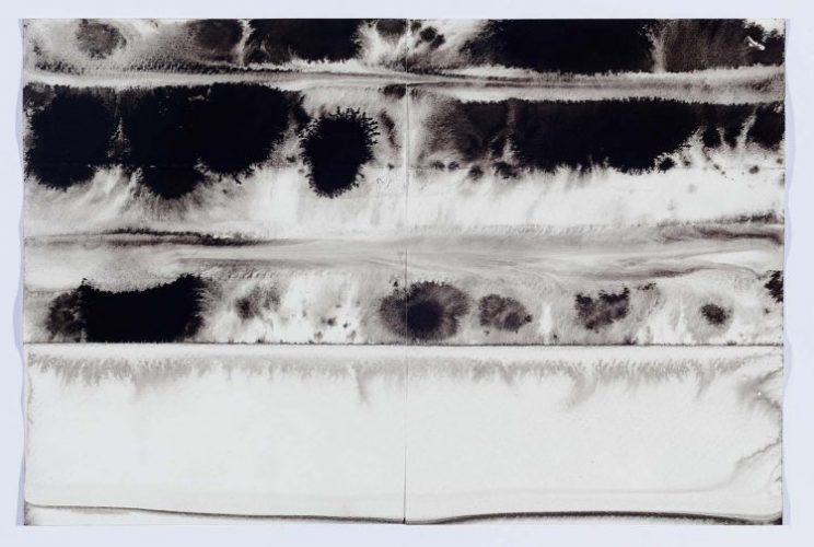 Desenhos em preto e branco feito com agua e nankim, artista plástica Paula Klien