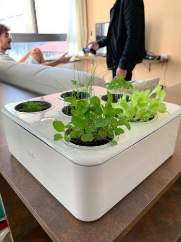 Primeira horta residencial inteligente do Brasil, Brota. Caixinha branca com espços para a horta