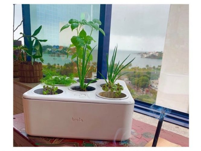 Primeira horta residencial inteligente do Brasil, Brota. Caixa branca com 6 capsulas com terra