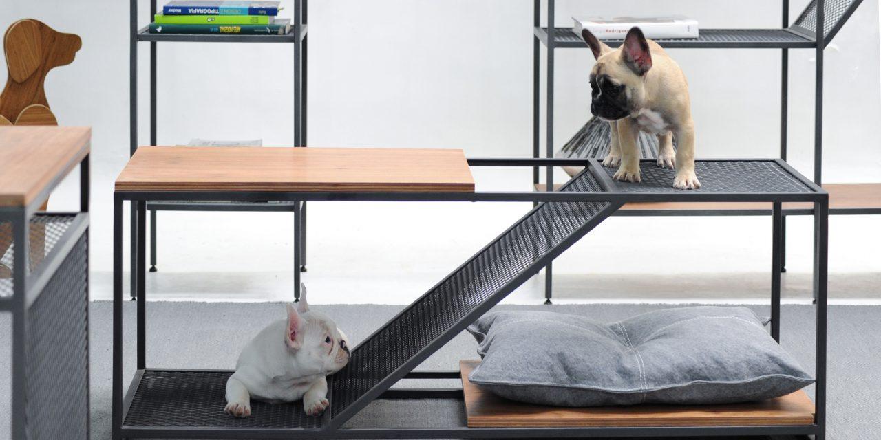 Linha de móveis em estilo industrial pensada para pets
