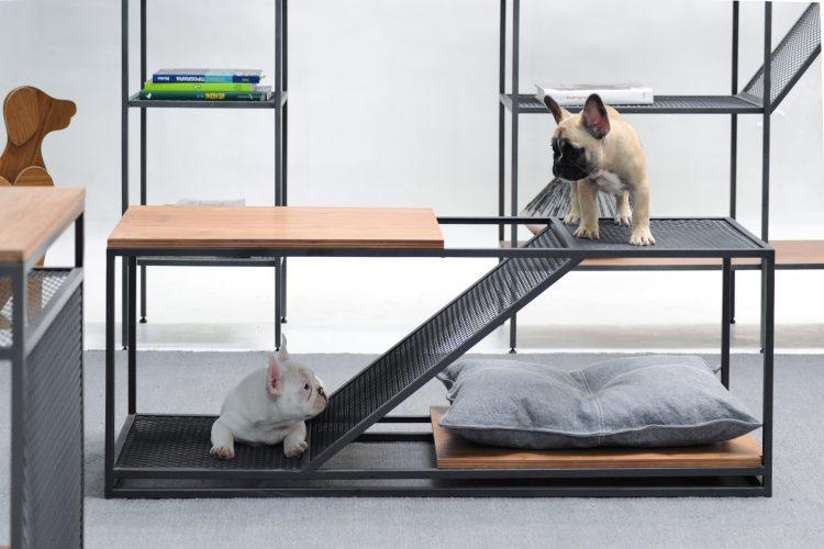 Linha de móveis em estilo industrial pensada para pets, mesa de centro em aço e um pequeno tampo de madeira e um escoredor no meio para o cachorro descer, na foto , um bullgod frances na parte de cima e outro na parte de baixo