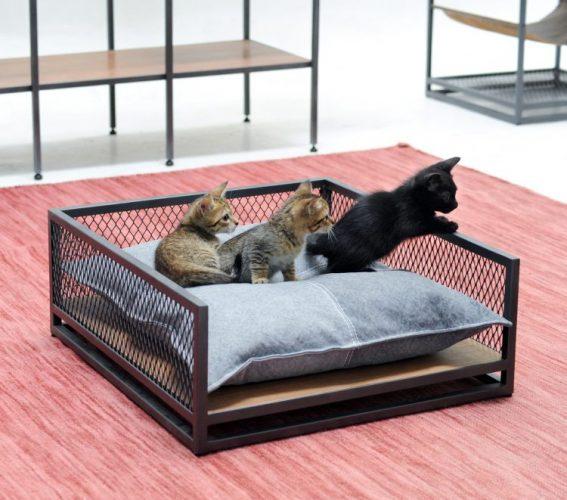 Linha de móveis em estilo industrial pensada para pets, quadrado em aço e uma almodafa no meio e tres filhotes de gato